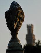 Cemetery 25 Gaudin