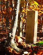CCNS-PL Smallpox Cemetery.jpg